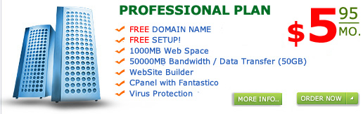 affordable personal simple and small business web hosting, $5 dollar hosting, php cgi perl and asp web hosting
