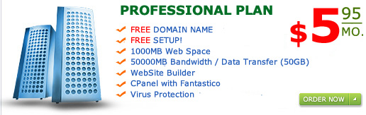 """Professional Plan"" 1000MB web space 50GB Bandwidth only for $5.95 a month"